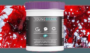 young brain blog inline 2 02 version